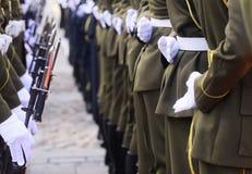 Soldater i rad. Royaltyfri Foto