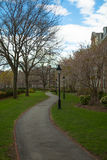 Soldatfeld Universität Harvard Stockbild