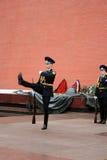 Soldathedersvakten moscow Royaltyfria Foton