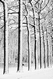 Soldati nella neve Fotografie Stock