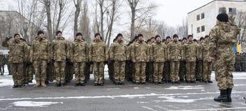 Soldati restituiti Fotografie Stock Libere da Diritti