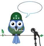 Soldato che dà intervista Immagine Stock