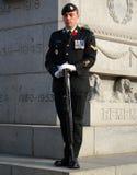 Soldato di giorno di ricordo davanti al memoriale di guerra immagini stock