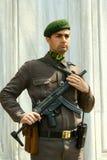 Soldato turco fotografie stock libere da diritti