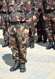 soldats Image stock