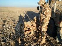 Soldats regardant avec l'attention Images stock