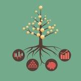 Soldi albero Fotografia Stock Libera da Diritti