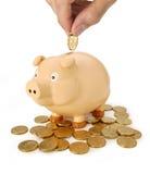 Soldi australiani di risparmio della Banca Piggy Fotografie Stock Libere da Diritti