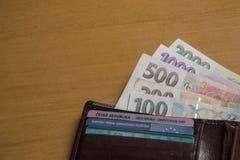 Soldi cechi sul portafoglio Fotografia Stock