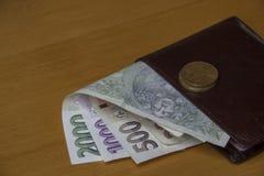 Soldi cechi sul portafoglio Fotografie Stock