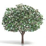 Soldi che crescono su un albero Immagini Stock Libere da Diritti
