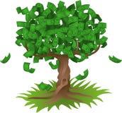 Soldi che crescono sull'albero Immagini Stock Libere da Diritti