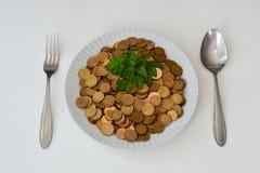 Soldi come alimento crudo Fotografie Stock Libere da Diritti