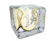 Soldi congelati in cubo di ghiaccio Immagine Stock Libera da Diritti