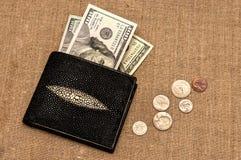 Soldi della borsa sul panno di tela Fotografia Stock