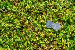 Soldi della moneta della rupia su erba verde Fotografie Stock