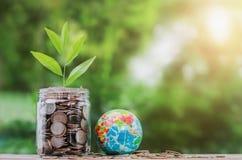 soldi di concetto con la pianta che cresce sulla moneta in barattolo e globo immagini stock