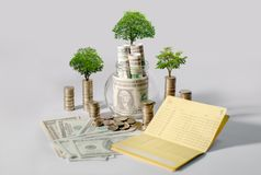 Soldi di risparmio di crescita di soldi L'albero superiore conia il concetto indicato dell'affare crescente immagine stock