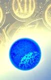 Soldi e globo blu Immagine Stock
