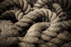 Soldi per la vecchia corda Immagine Stock
