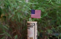 Soldi rotolati della banconota dieci dollaro americano e bastoni con la mini bandiera dell'America sul fondo verde della natura immagine stock libera da diritti