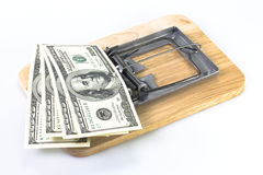 Soldi in un mousetrap. Immagine Stock Libera da Diritti