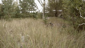 Soldier aims from the machine gun in grass stock footage