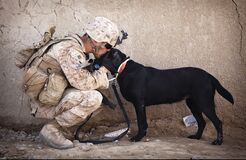 Soldier and Black Dog Cuddling Royalty Free Stock Photography