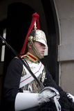 Soldier from Blues and Royals Cavalry Regiment. Stock Photography