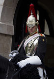 Soldier from Blues and Royals Cavalry Regiment. Stock Photo