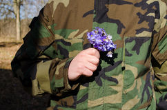 Soldier camouflage hand violet flowers girlfriend Royalty Free Stock Image
