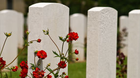 Military graves in Normandy. White military graves of American soldiers in Normandy, France Stock Photos
