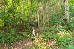 Soldier or chasseur walking through a forest with lush grass Stock Photo