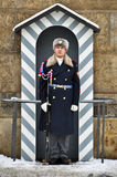 Soldier of elite Prague Castle Guard Royalty Free Stock Images