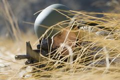 Soldier In Grass Aiming With Rifle Stock Image