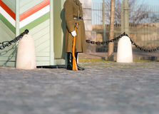 Soldier on guard at Buda Castle Hill. Stock Photography