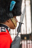 Soldier On Guard Duty. A close up of a British soldier on guard duty at St. James' palace in London Royalty Free Stock Image