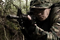 Soldier in the jungle stock photography