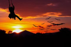 Soldier silhouette parachute with a bat Vampire flying red sky on sunset in forest the Halloween night Concept with copy space add. Text Royalty Free Stock Images