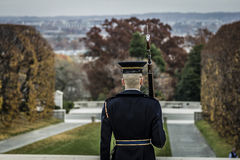 Soldier standing at attention 2. Soldier standing at attention with D.C. in the background 2 Stock Photos