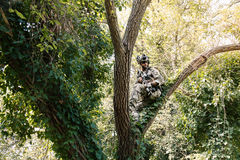 Soldier in uniform of the U.S. Army on the trees Royalty Free Stock Images