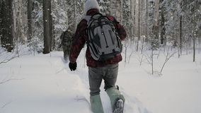 Soldier with weapons in cold forest. Winter warfare and military concept. Clip. Soldiers in winter forest on skis with. Guns. Military exercises in the forest stock video footage