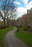 Soldiers field Harvard University. Stock Image
