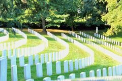 Soldiers grave stones. Grave stone white royalty free stock image