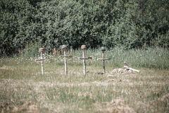 Soldiers` graves Royalty Free Stock Photography