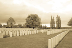 The Soldiers of the great war cemetery flanders Belgium Royalty Free Stock Photos