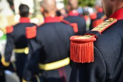 Guard of honor during a military ceremony Royalty Free Stock Images