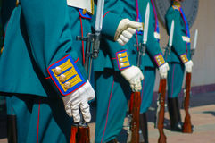 Soldiers in parade uniform with rifles Royalty Free Stock Photo
