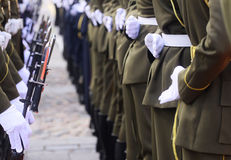 Soldiers in a row. Uniformed soldiers standing in a row royalty free stock photo