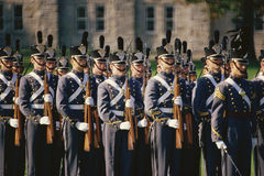 Soldiers standing at attention, Stock Photo